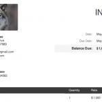 Invoiced Lite Final