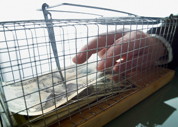 hand reaching into mousetrap for money