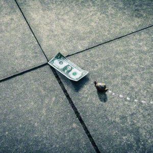 snail inching toward dollar bill