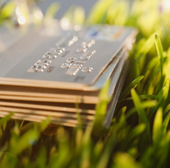 credit cards in the grass
